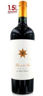 MAGNUM - CLOS DE LOS SIETE 2012 (Argentina - Wine Cafayate - Red Wine - 1,5 L)