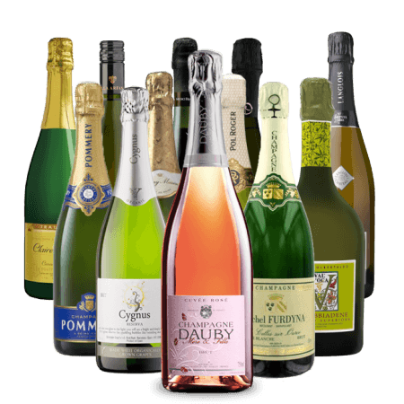 12 WINES OF CHRISTMAS - FIZZ WINE LOVERS - PRE-MIXED WINE CASE