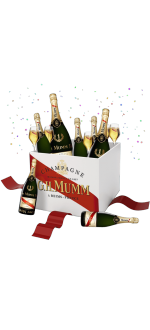SPECIAL PACK PARTY - MUMM CORDON ROUGE