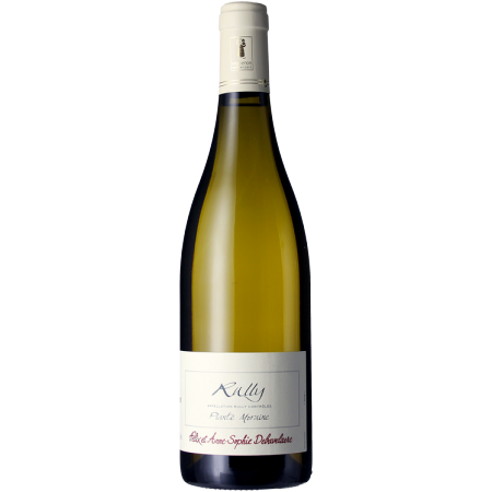 RULLY - PLANTE MORAINE 2017 - DOMAINE ROIS MAGES