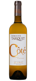 COTE TARIQUET 2019 - DOMAINE TARIQUET