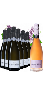 MIXED CASE FOIRE AUX VINS CHAMPAGNE LE BRUN DE NEUVILLE 12 BOTTLES BOUGHT = 1 BOTTLE OF CHAMPAGNE ROSE FREE