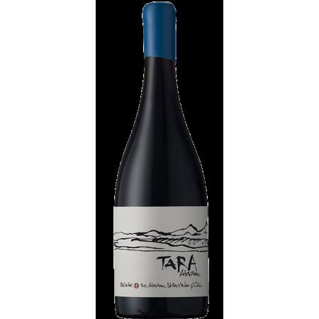 RED WINE N°2 2016 - SYRAH - TARA