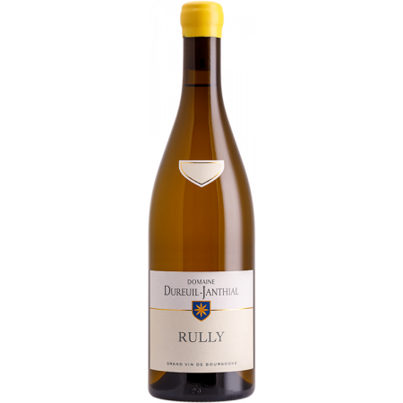 RULLY BLANC 2018 - DOMAINE DUREUIL-JANTHIAL
