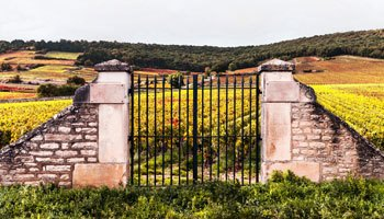 Most famous wine estates: buy with confidence on vinatis!