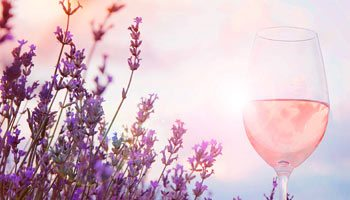 Fine rose wines: the best value for money on vinatis!