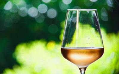 White wine grape - Muscat